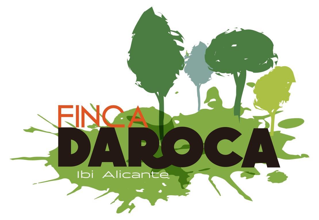 Campus de verano en Finca Daroca